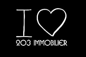 Découvrez l'immobilier à Niort avec 203 immobilier, agence immobilière niortaise. Son équipe dynamique et à l'écoute vous guide dans la réussite de votre projet immobilier.